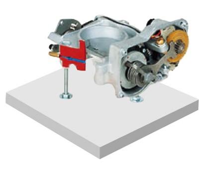 节气门解剖模型