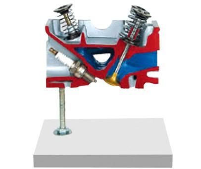 气缸盖解剖模型